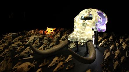 2012生きる形展 東京大学 2